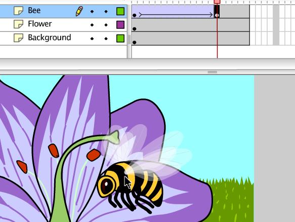 Image for Animation numérique