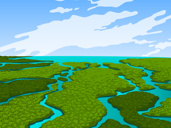 Image for Everglades