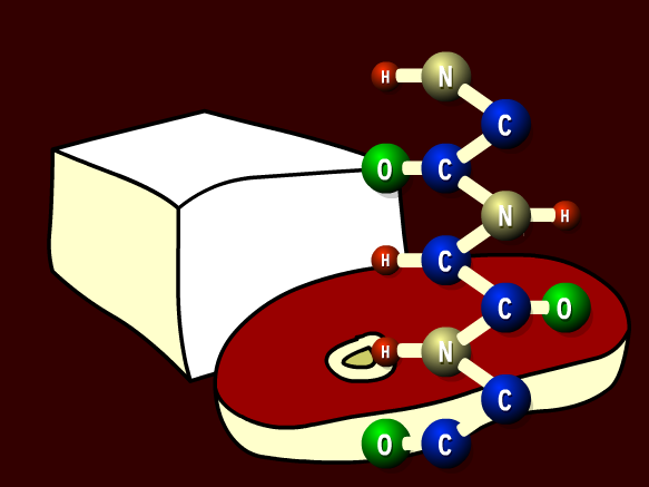 Image for Biochimie