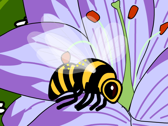 Image for Pollinisation
