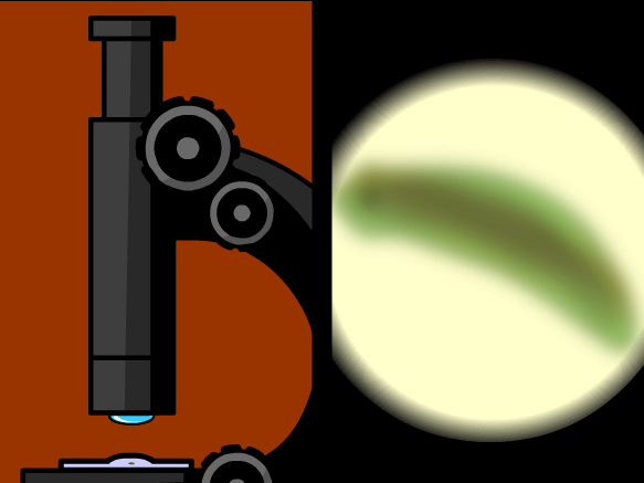 Image for Microscopes