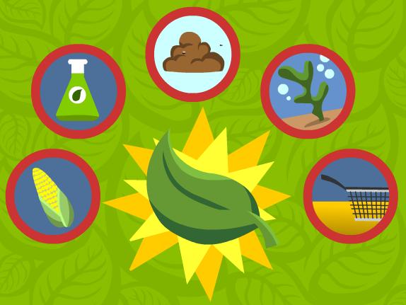 Image for Biocarburants