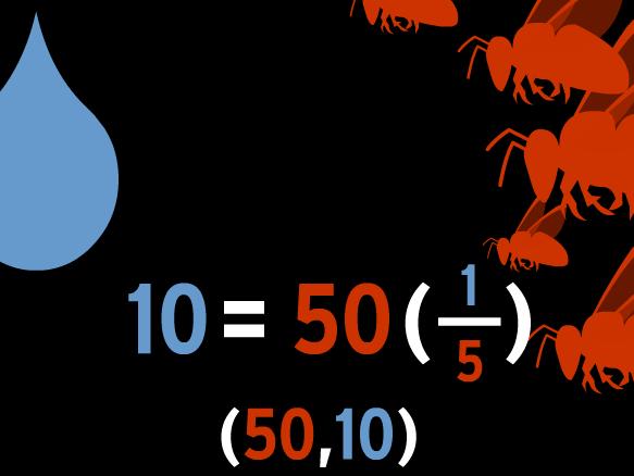 Image for Représentation des équations linéaires