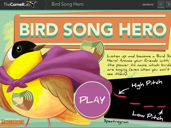 Image for Bird Song Hero