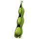 Build-A-Plant: Soybean
