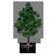 Build-A-Tree