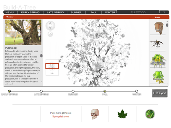 Slideshow image for Build-A-Tree
