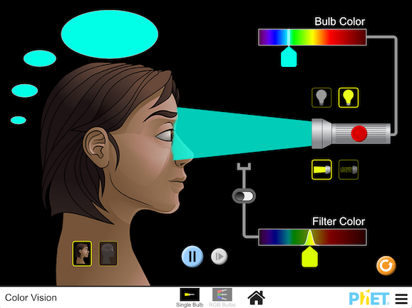 Image for Color Vision
