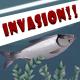 Invasion!!