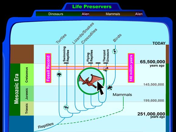 Slideshow image for Life Preservers