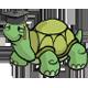Turtle Academy