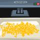 Virtual Labs: Testing for Corn Mold