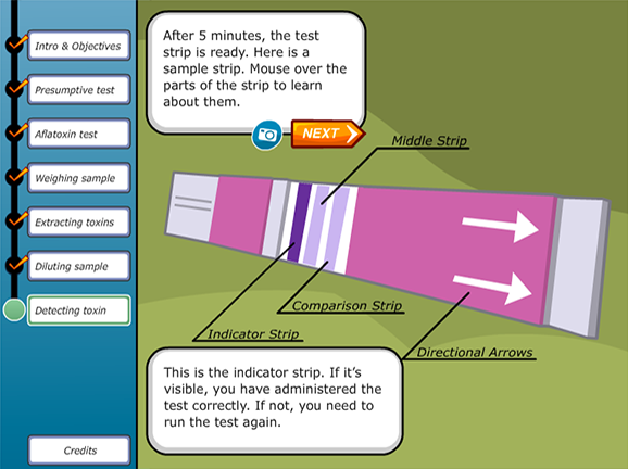 Slideshow image for Virtual Labs: Testing for Corn Mold