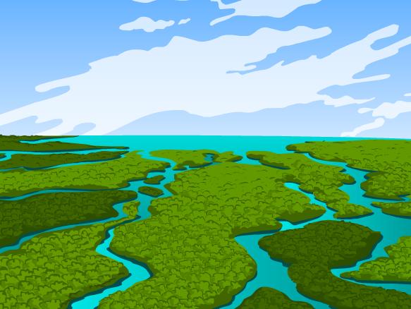 Image for Everglades