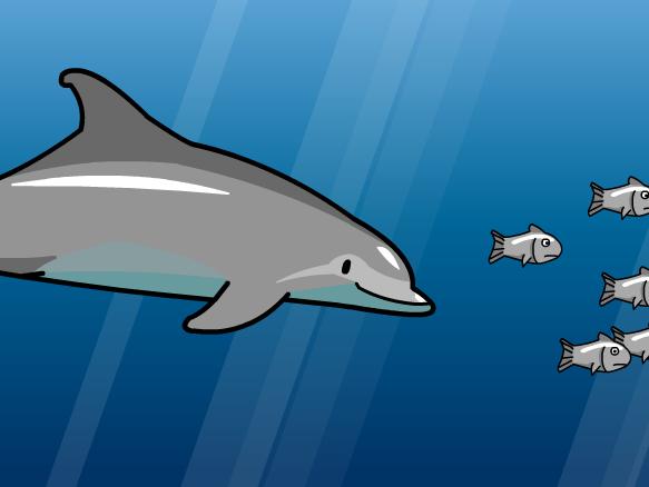 Image for Delfines