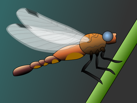 Image for Insectos