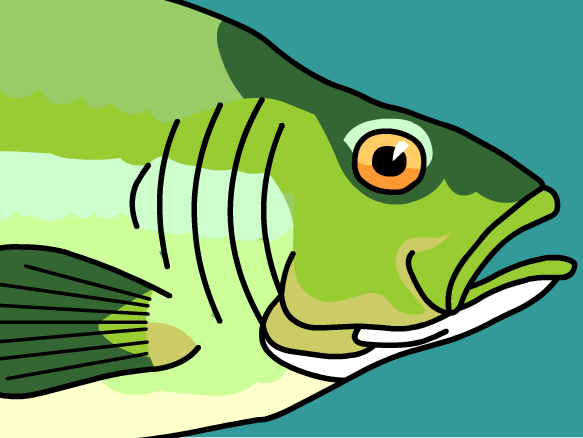 Image for Peces