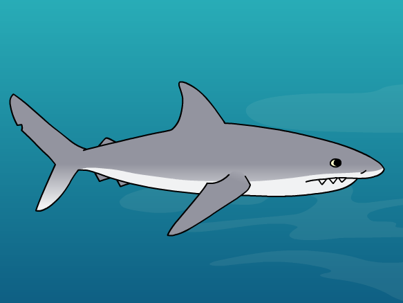 Image for Tiburones