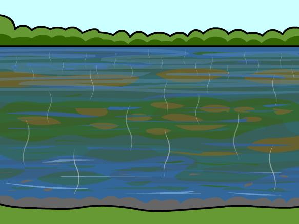 Image for Contaminación del Agua