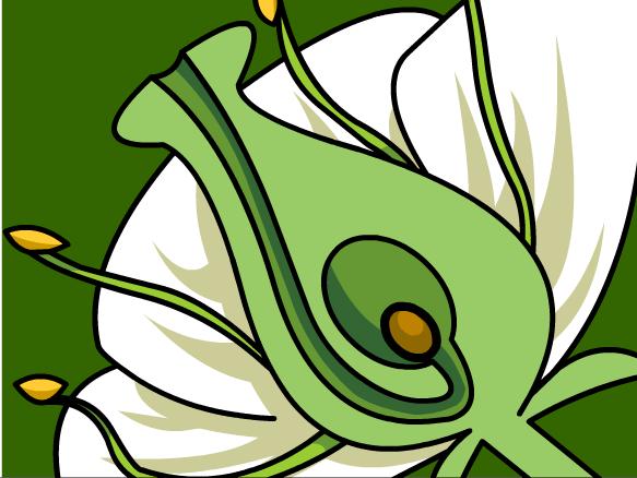 Image for Desarrollo de las Plantas