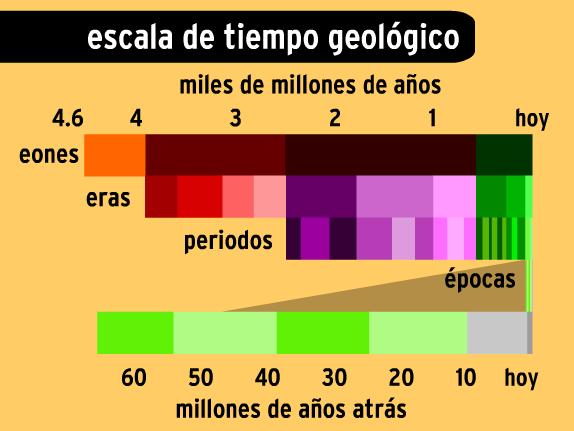 Image for Tiempo Geológico