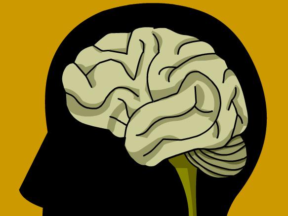 Image for Cerebro