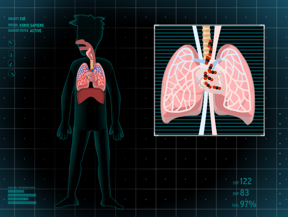 Cellular Respiration Lesson Plans and Lesson Ideas ...Simple Cellular Respiration Animation