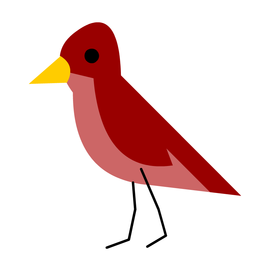 All About Bird Anatomy - GameUp - BrainPOP.