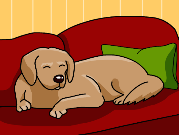 Image for Dogs