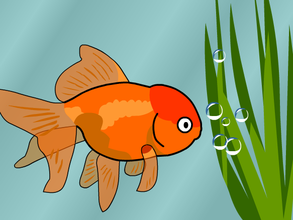 Fish lesson plans and lesson ideas brainpop educators for Do all fish have gills