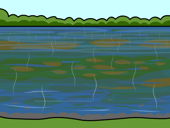 Image for Water Pollution