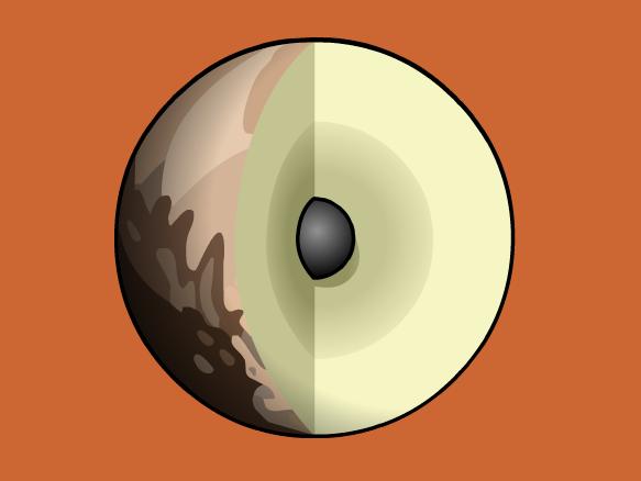 Pluto Lesson Plans and Lesson Ideas | BrainPOP Educators