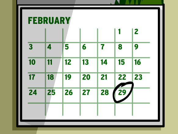 Image for Leap Year