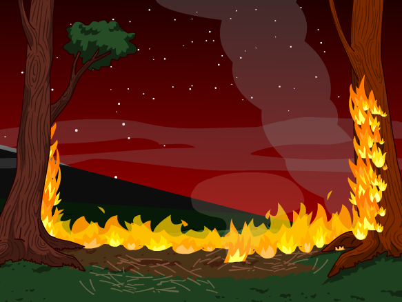 Image for Wildfires