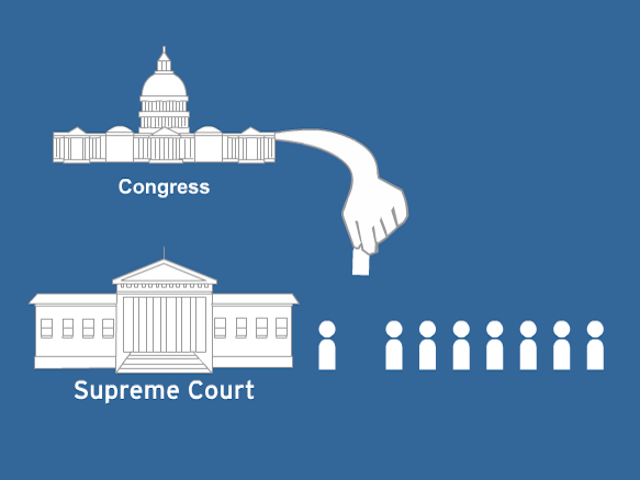 Image for Branches of Government