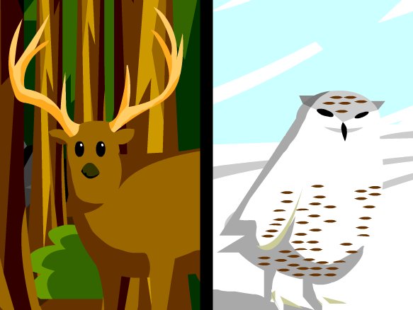 Interactive Classroom Design Tools ~ Camouflage lesson plans and ideas brainpop educators