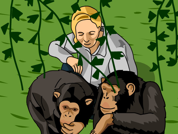 Classroom Design Games ~ Jane goodall lesson plans and ideas brainpop